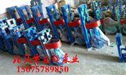 BRY80-50-200导热油泵 15kw电机热油泵