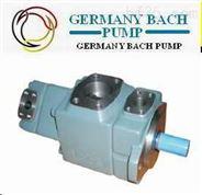高壓固定容量雙輪葉片泵