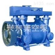 河北兴东2BEA-153水环真空泵