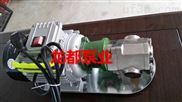 WCB-30手提式电动油泵/手提式齿轮泵/手提式微型齿轮油泵