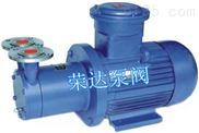 CW磁力旋涡泵