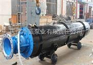 軌道安裝礦用潛水泵   礦用潛水排污泵哪個品牌Z好