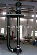 EQYWS型双吸式大流量液下泵