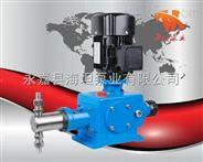计量泵 DZ-Z系列柱塞式计量泵