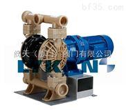进口氟塑料电动隔膜泵 进口耐酸碱气动隔膜泵