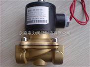 2W系列黄铜电磁阀生产厂家