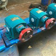 河北泊头宝图泵业DHB点火油泵/增压燃油泵