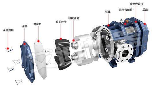 转子6油泵结构